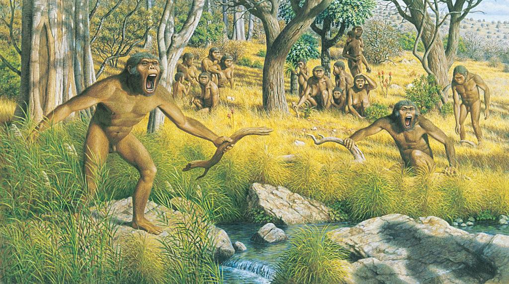 Reproduction d'une tribu d'Australopithèques