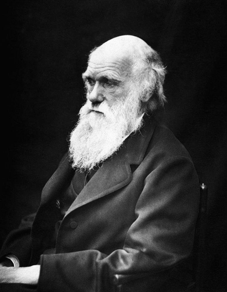 Portrait de Charles Darwin